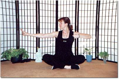 Practice the Healing Art of Qigong at Home with video and booklet